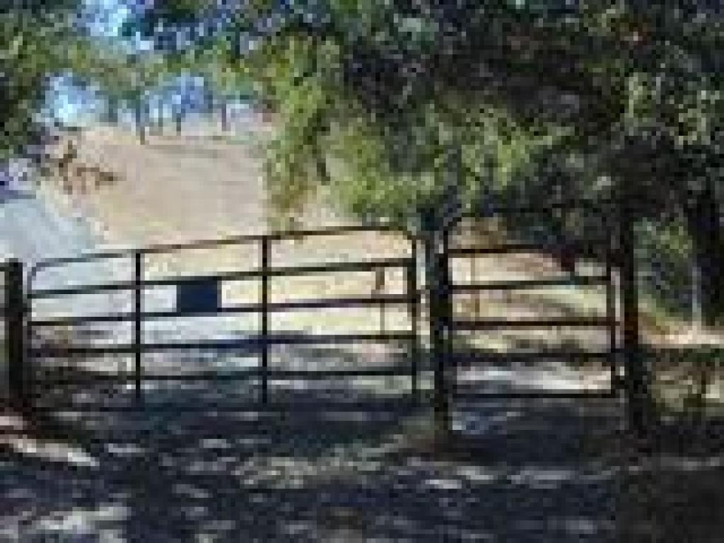 Cattle gate and junction