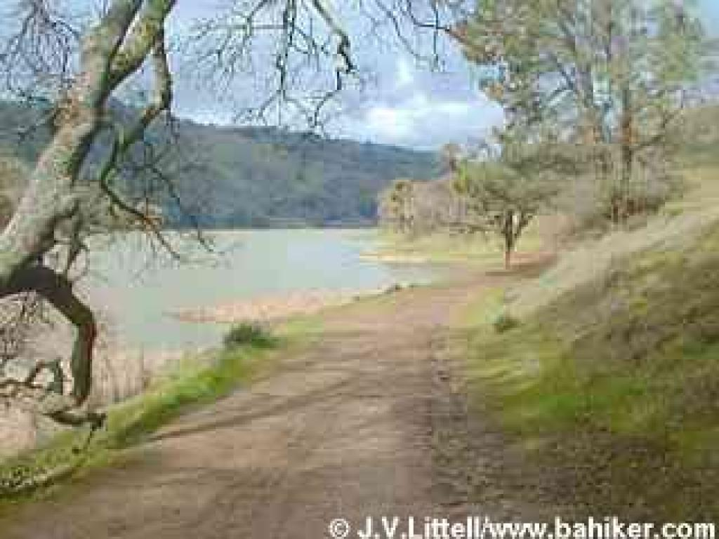 Photo of East Shore Trail, Del Valle Regional Park