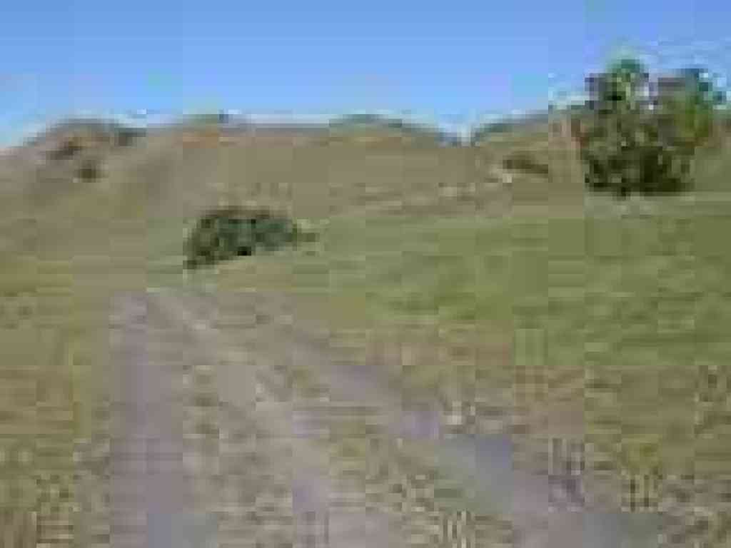 Back on Briones to Mount Diablo Trail