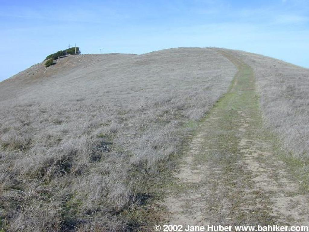Bay Area Ridge Trail, by Jean Rusmore ( order this book from Amazon