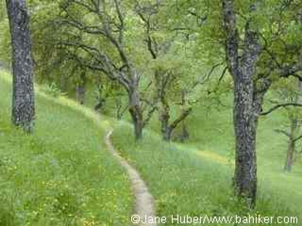 John Muir Nature Trail