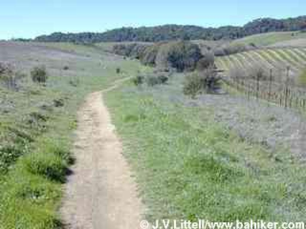 Dry Creek Trail