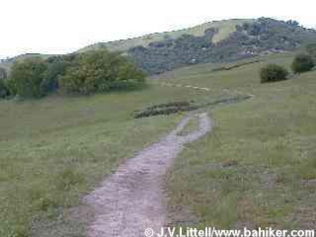 Michako Trail