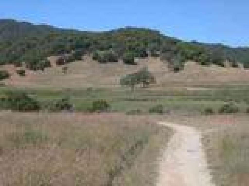 View to Miwok Meadows