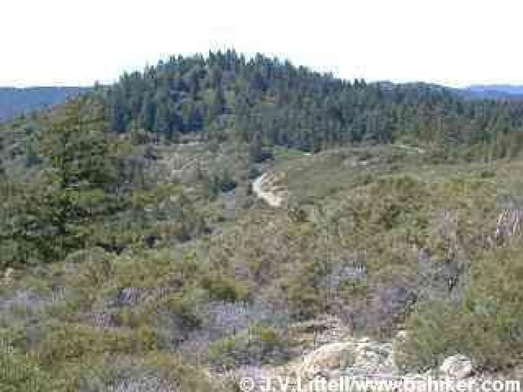 View of the forested San Geronimo Ridge