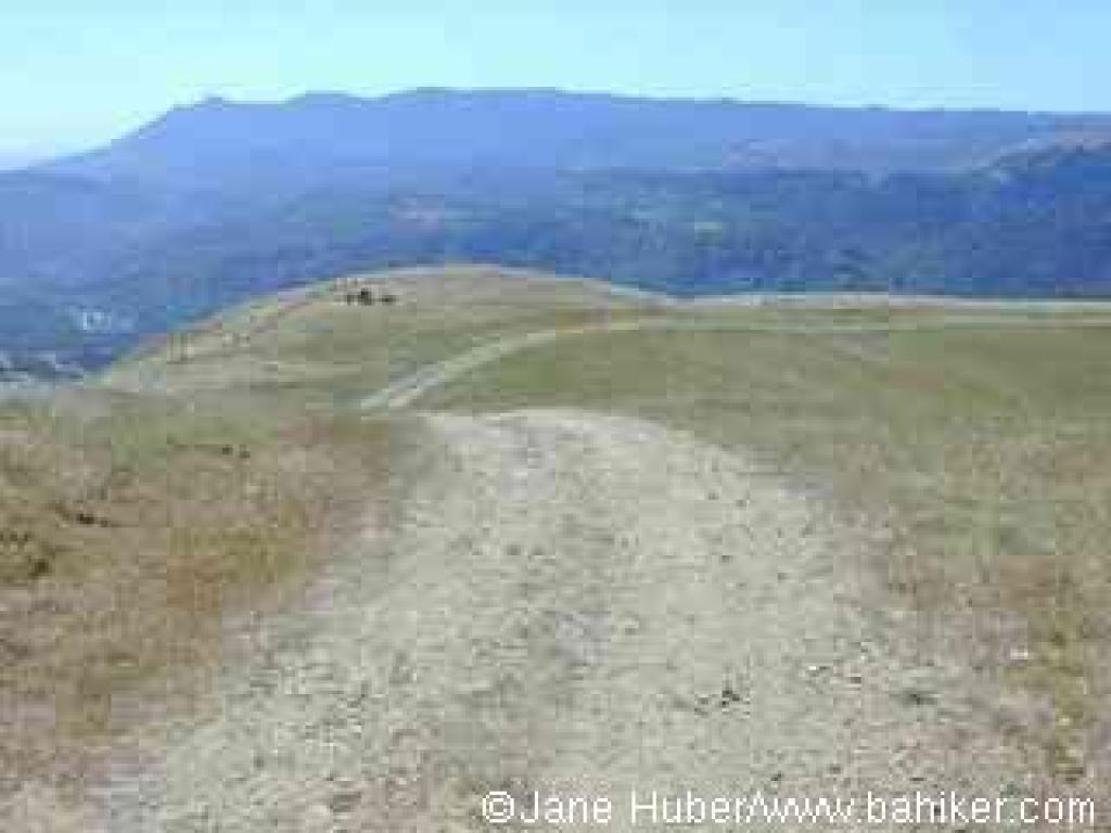 At the top of Loma Alta, with a view to Mount Tam