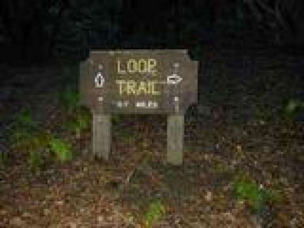 Loop Trail sign