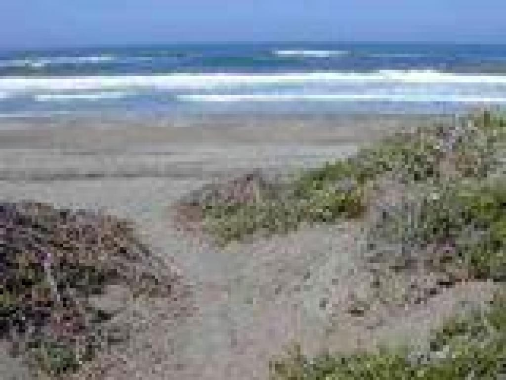 Trail ends at the beach