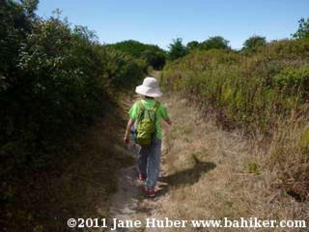 Ano Nuevo Point Trail