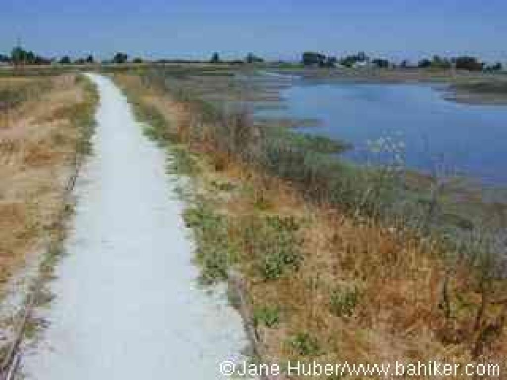 Marsh Front Trail