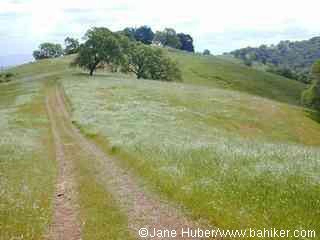 Los Cerritos Trail