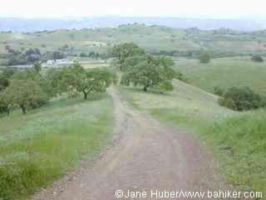 Pena Trail