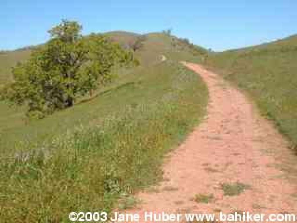 Halls Valley Trail