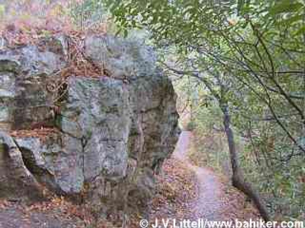 Trail and boulder