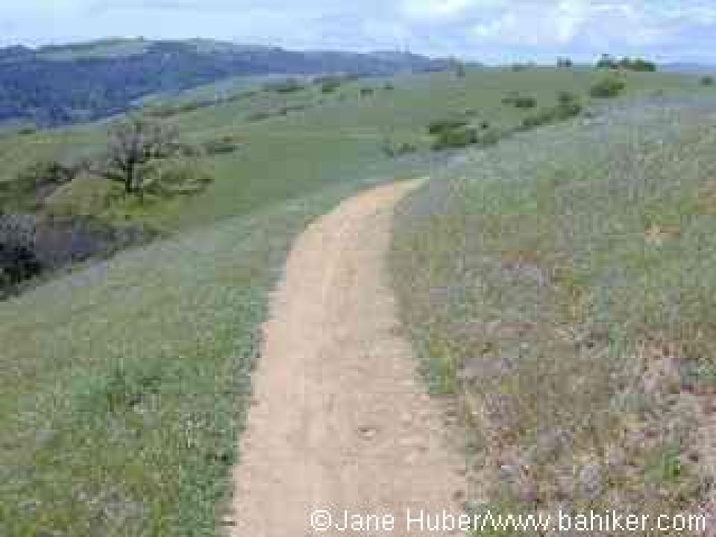 Old Ranch Trail