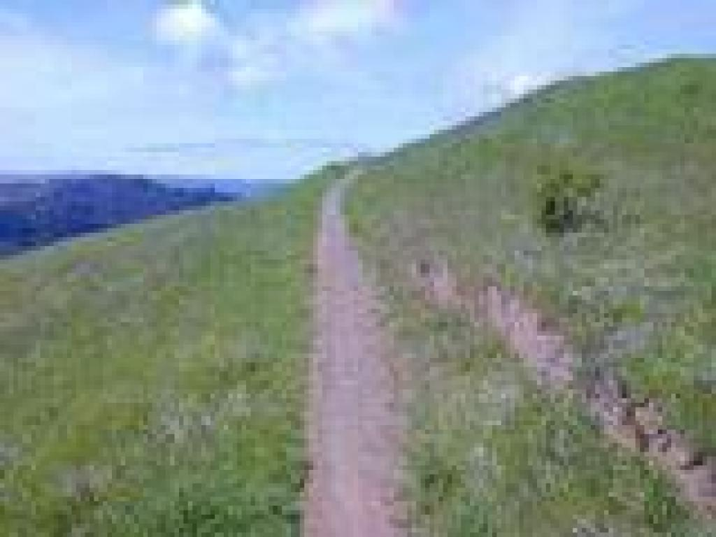 Path to backpack camp