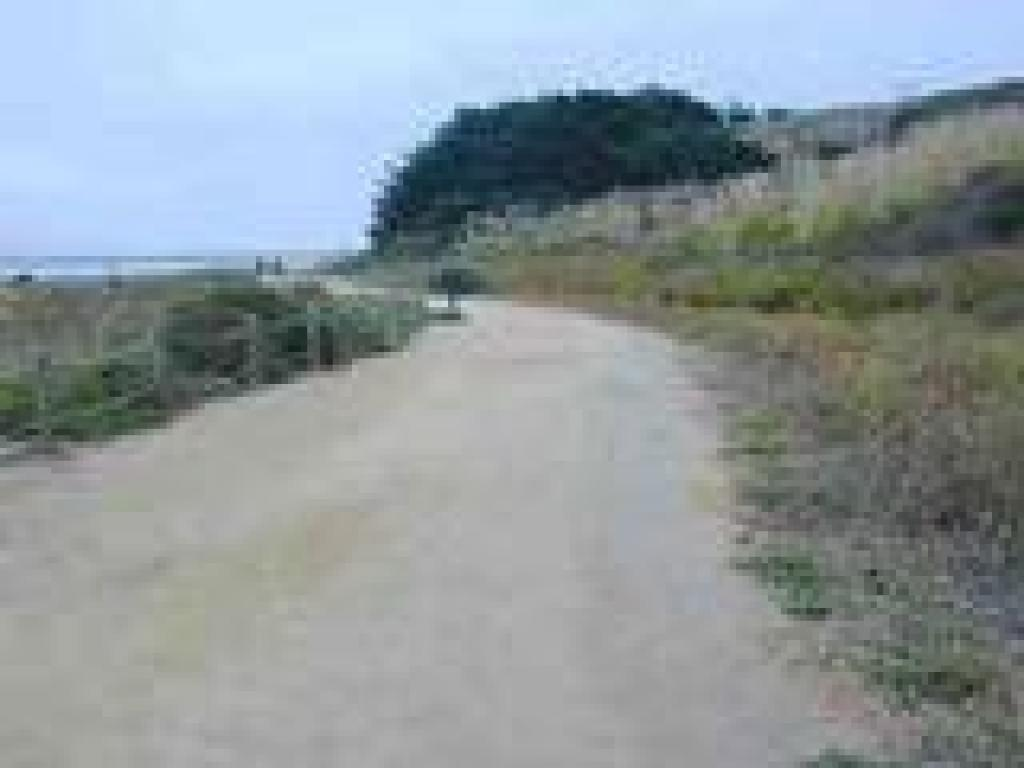 Trail to Pillar Point