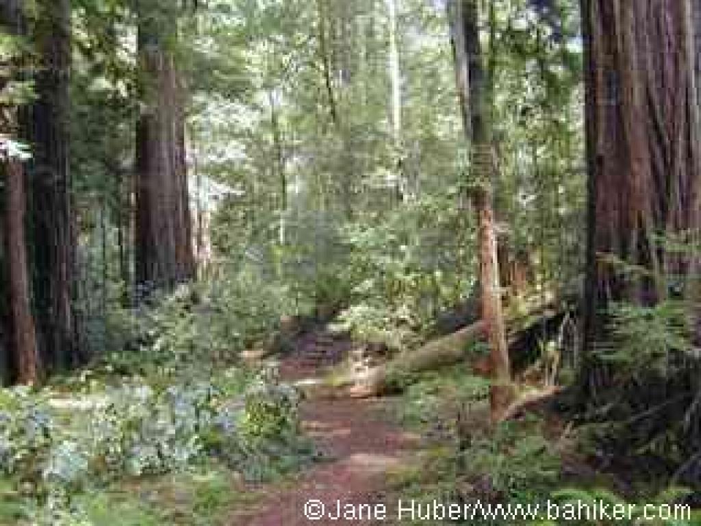 Iverson Trail