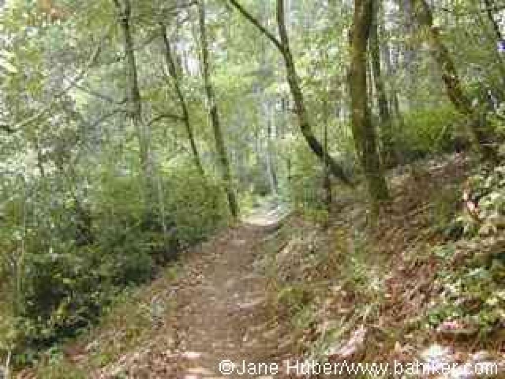 Pomponio Trail