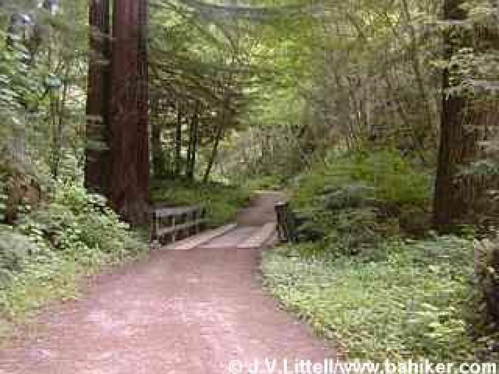 Purisima Creek Trail
