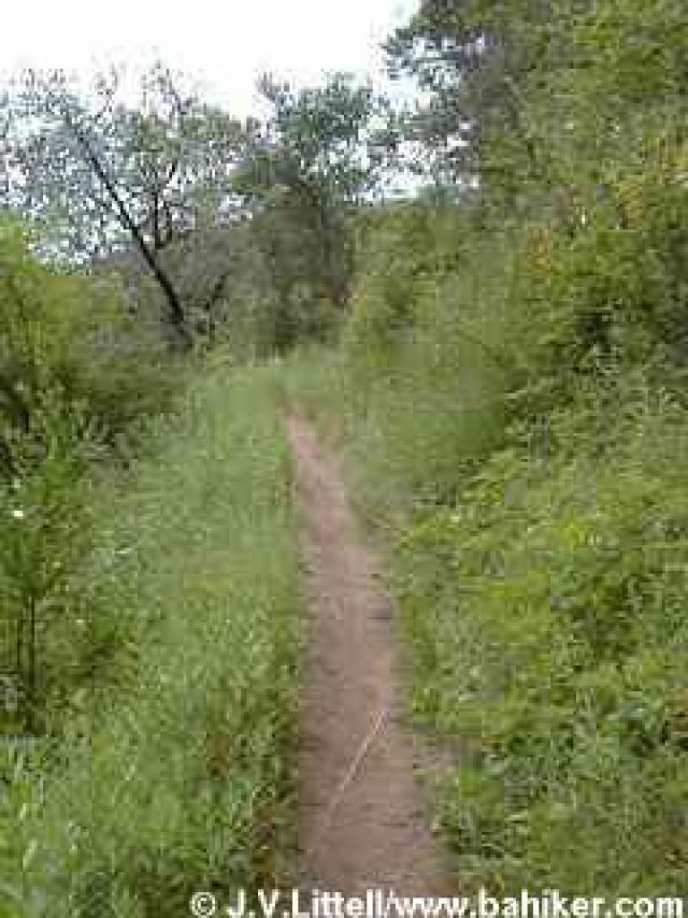 Soda Gulch Trail