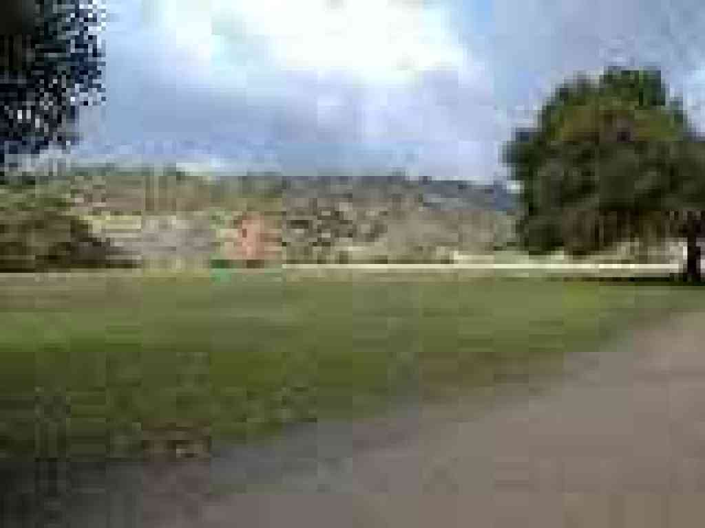 Photo of meadow at Rancho San Antonio
