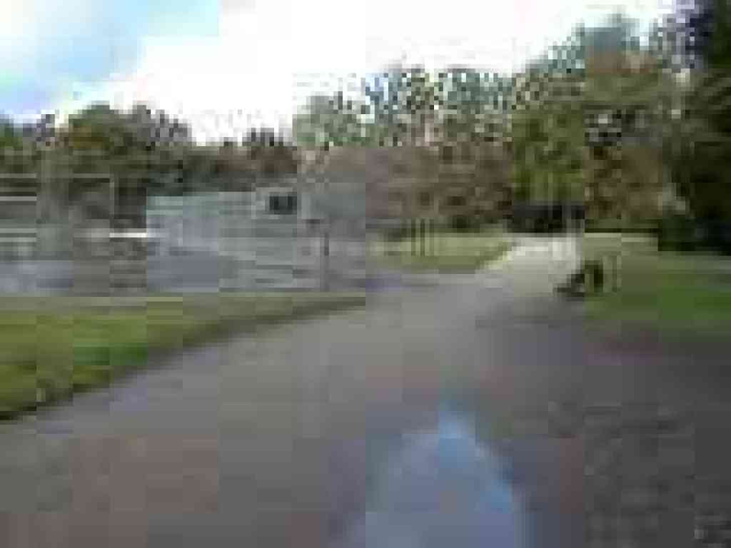 Photo of trails past tennis courts
