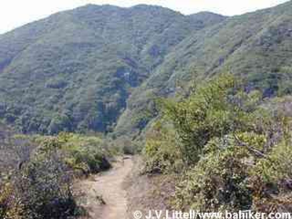 Brooks Falls Trail