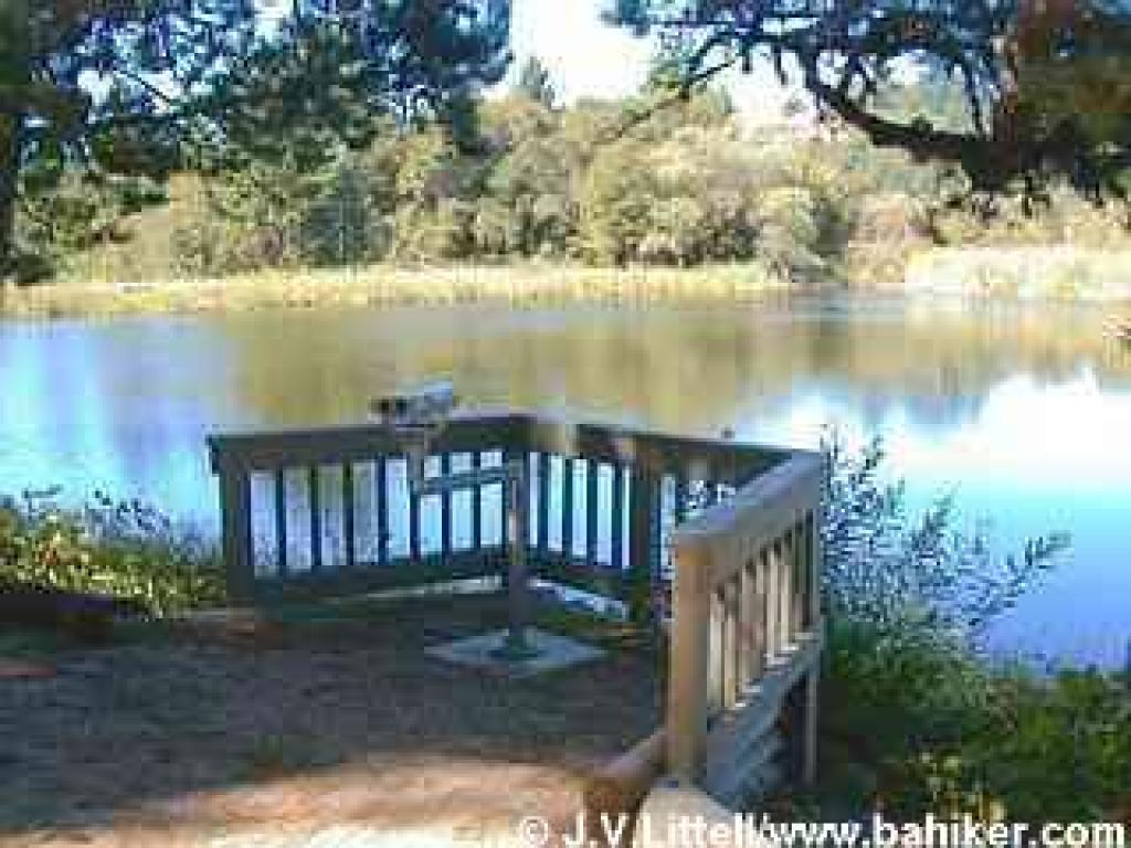 Photo of wheelchair-accessible viewing station, Alpine Pond