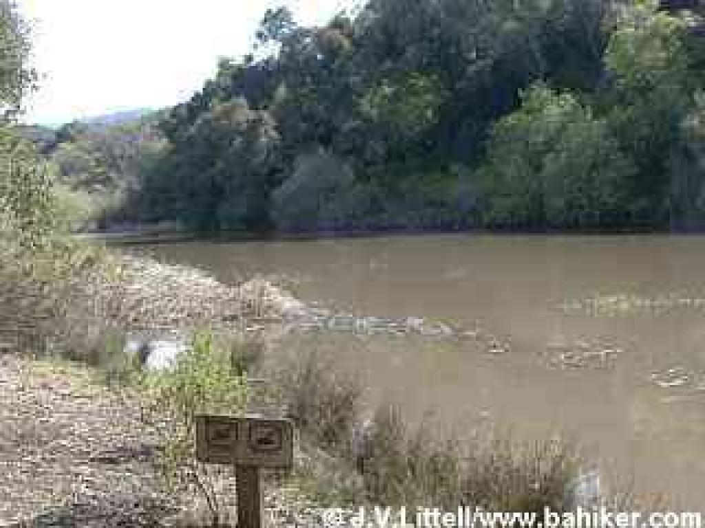 http://www.bahiker.com/pictures/southbay/windyhill/031901/small/138pond.jpg